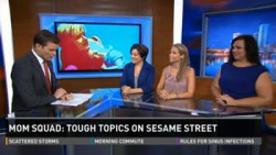 Ellie and the Mom Squad on 10News Tampa